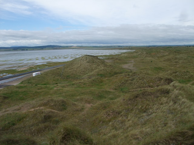 Amongst the dunes on Holy Island