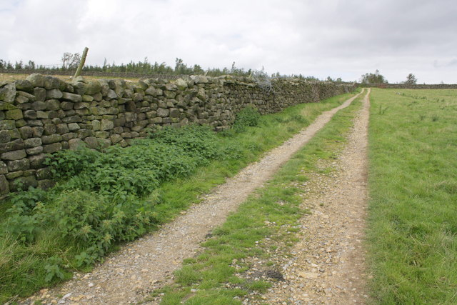 Track leading from Sowden Beck Farm towards Witton Fell