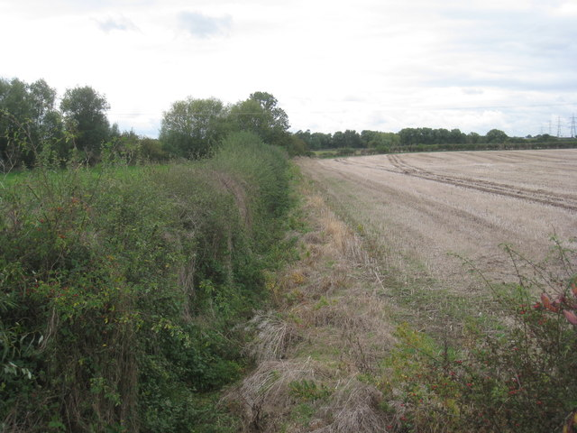 Field boundary near Bluebell Farm