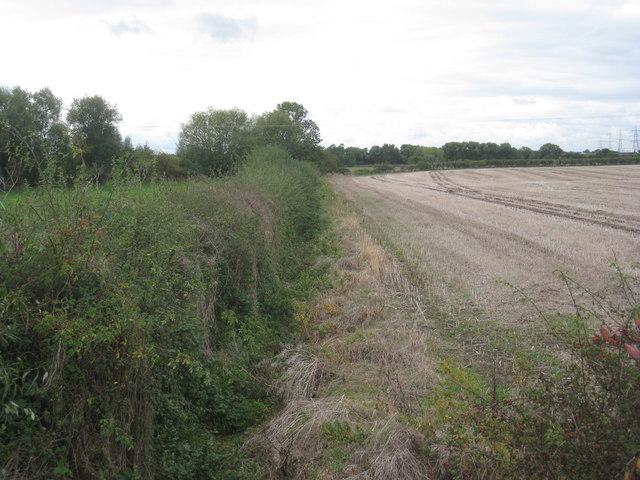 Field boundary near Bluebell Farm