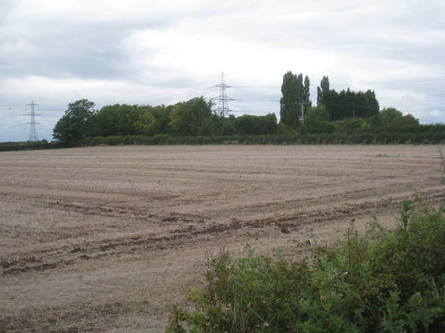 View near Bluebell Farm, Weston