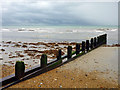 TQ1903 : Groyne, Lancing Beach by Robin Webster