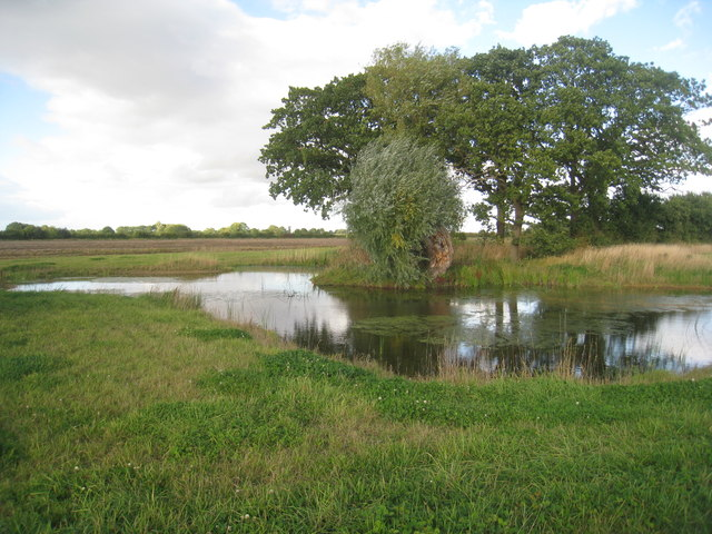 Pond off Folly Lane