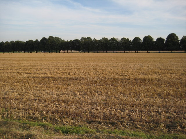 Stubble field at Earl's Croome