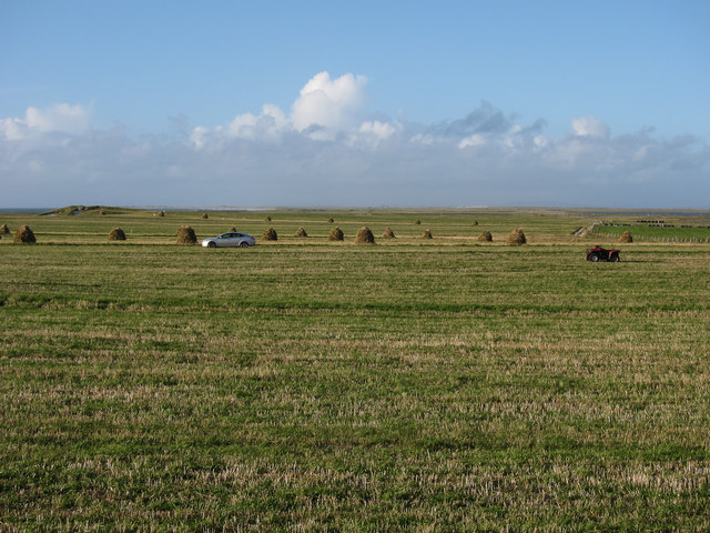 Harvesting on the machair