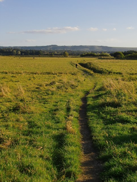 Footpath across Pulborough Brooks
