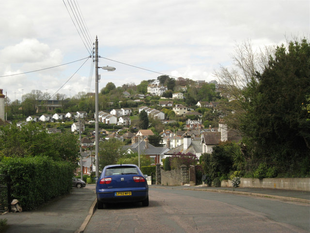 Looking down Haldon Avenue