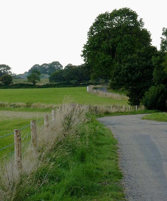 Lane north of Catherine de Barnes, Solihull