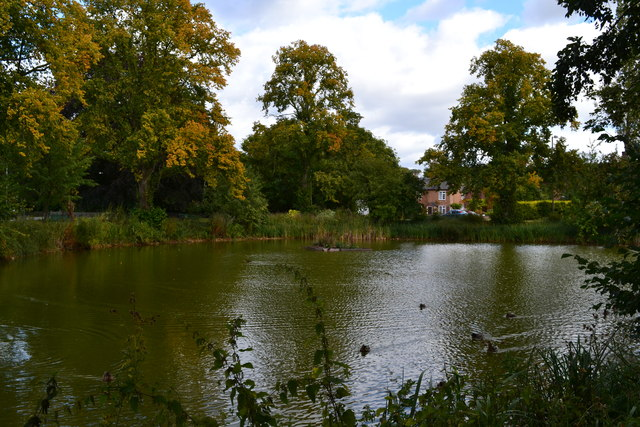 Duck pond, Long Itchington