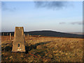 NY6444 : Trig point on Black Fell by Trevor Littlewood