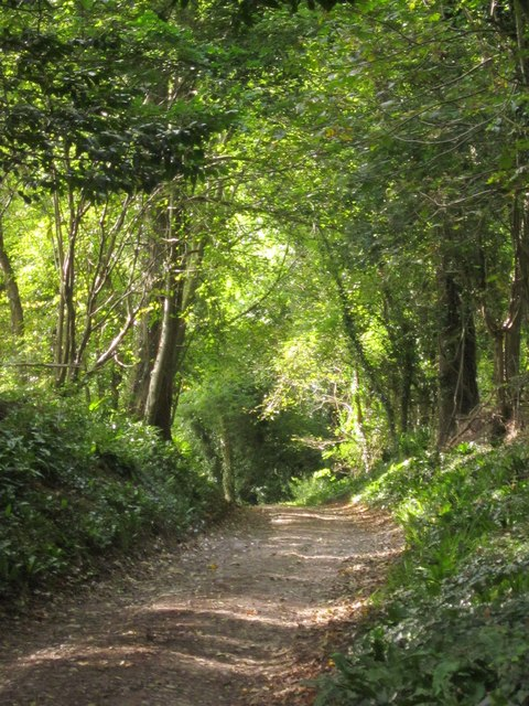 Coast path below Allhallows