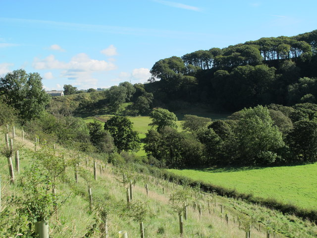 The valley of the River Irthing east of Milecastle 49 (Harrow's Scar)