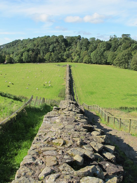 Hadrian's Wall between Willowford Farm and the River Irthing