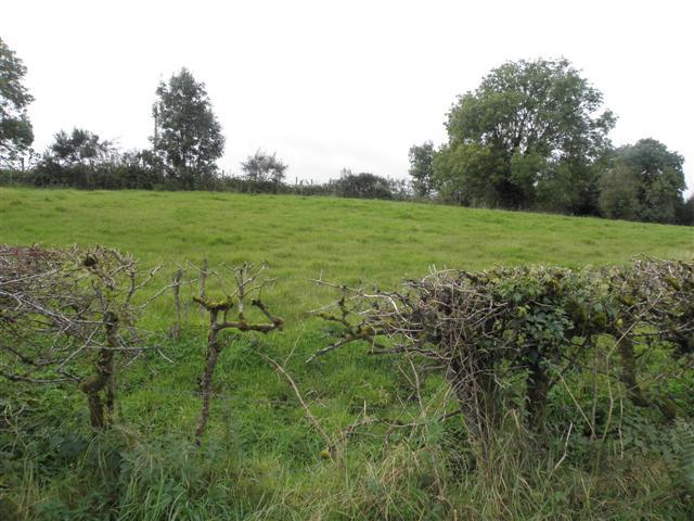 Beagh Townland