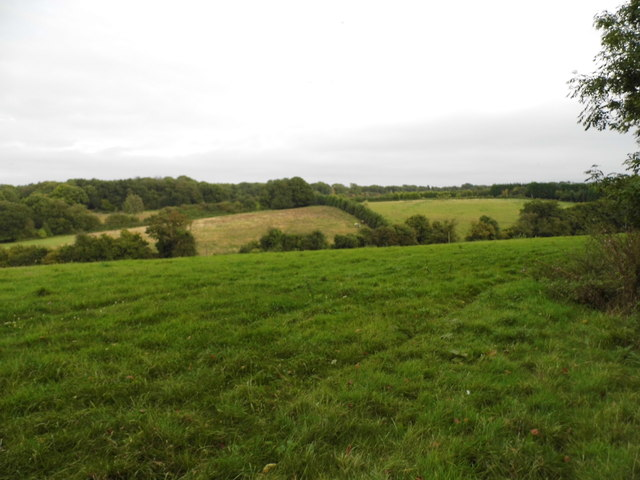 Fields by Charmwood Lane, Pratt's Bottom