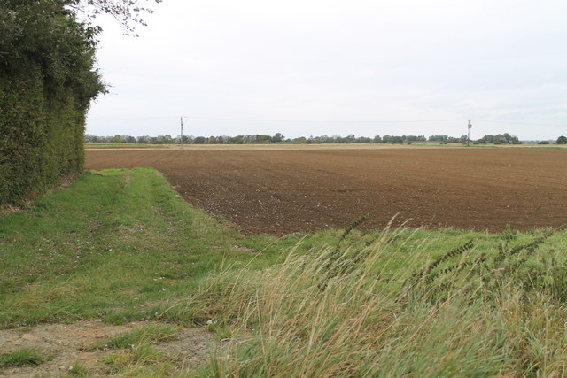 Fields near Heckington, off A17 road