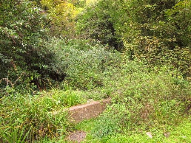 Masonry, Pinhay Cliffs