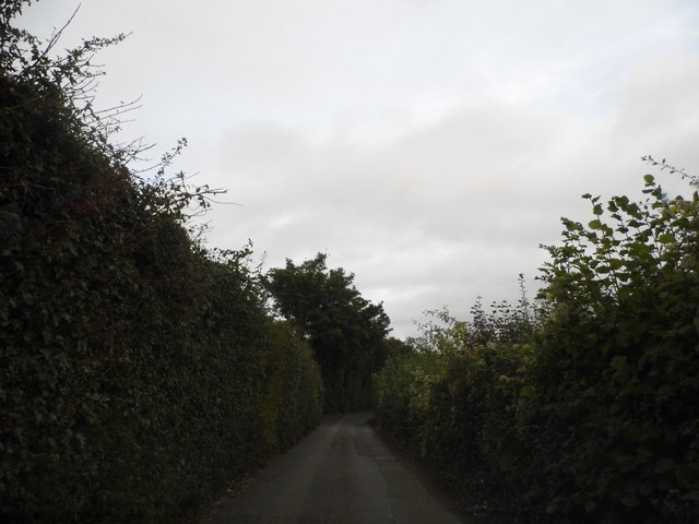 Pilgrim's Way, Kemsing
