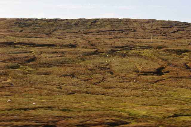Moorland north of Petta Water