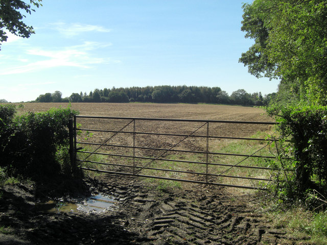 Arable field entrance southeast of Newhouse Farm
