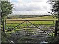 NS5127 : Field entrance by Richard Dorrell