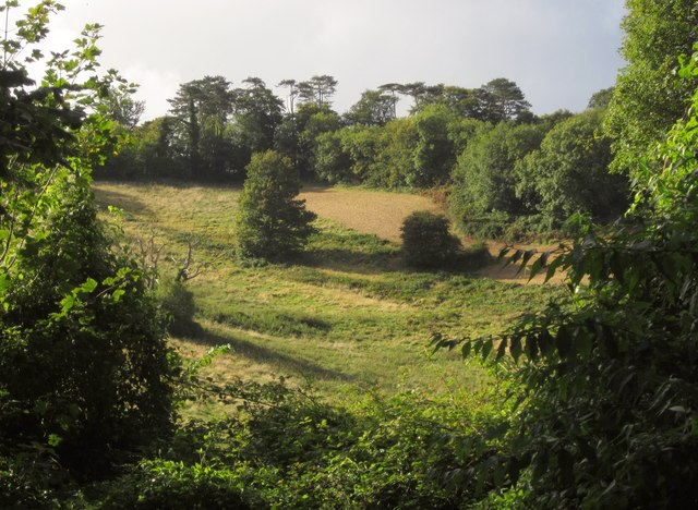 Sladnor Park