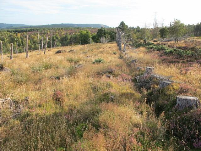 Hill Track near Alltnafourack