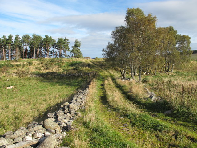 Farm Track and Old Stone Walls near Branchill