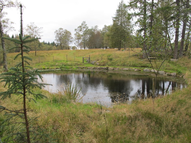 Pond Near Easter Brylack