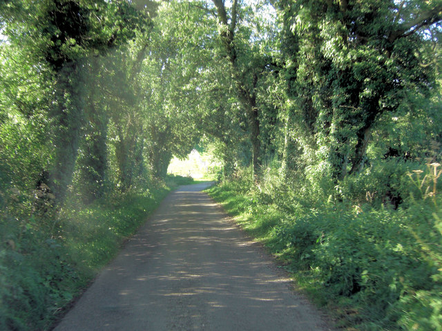 Unnamed lane west of Southwold Farm