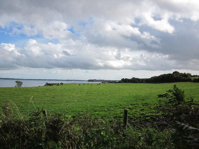 Farmland near Hillhead of Craichmore