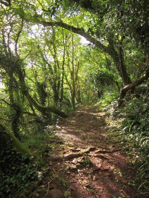 John Musgrave Heritage Trail