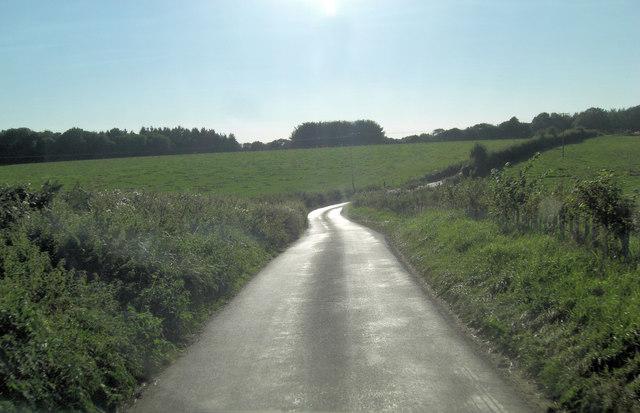 The shining path that is Grammarsham Lane