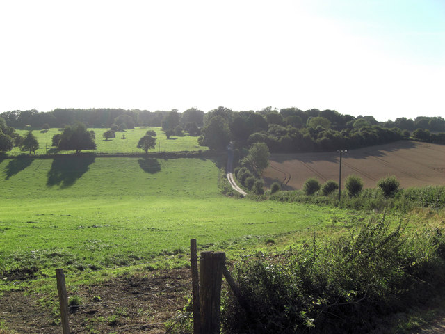 Bedlam Bottom from Grammarsham Lane