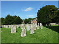 SY6593 : St Mary, Stratton: churchyard (F) by Basher Eyre