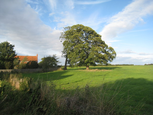 Field opposite Asgarby church