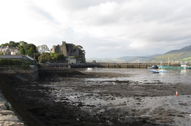 Carlingford Harbour at low tide