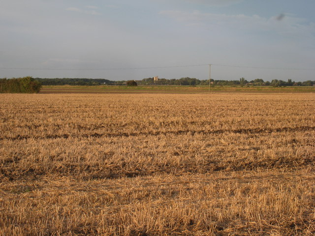 View towards South Kyme