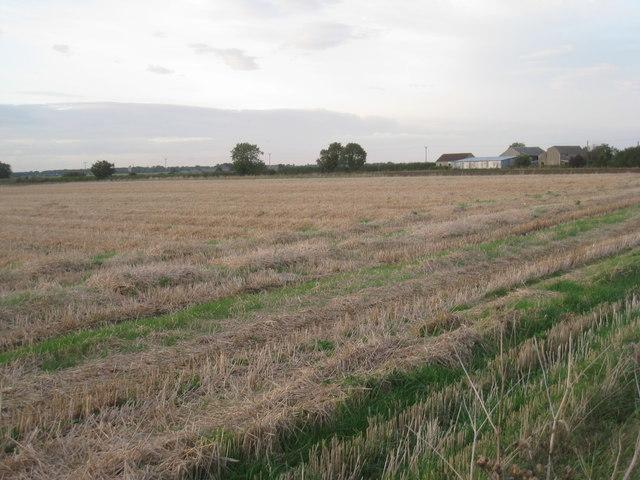 Farmstead in Star Fen