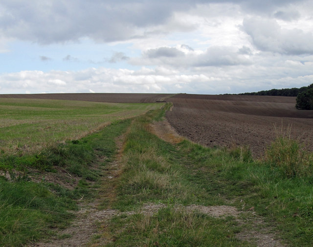 The Public Footpath to Elsham Hill