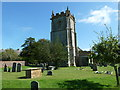 SY6399 : Sydling St Nicholas: churchyard (m) by Basher Eyre