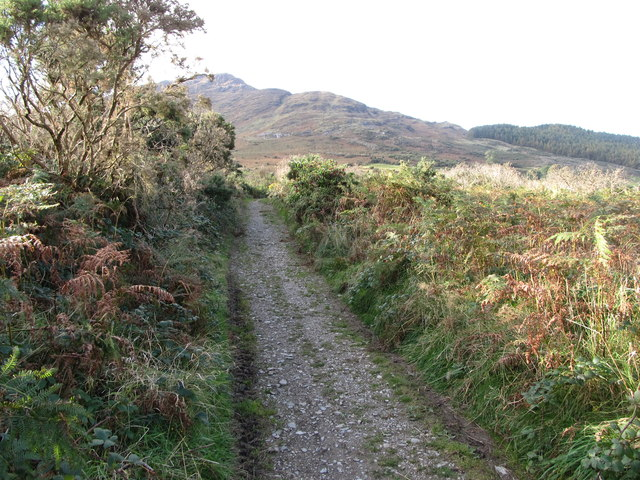 Track leading on the Mountain