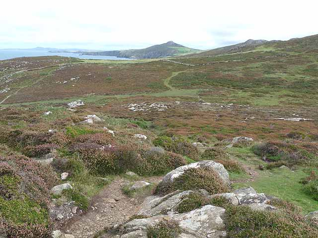 Paths and plateau east of St David's Head