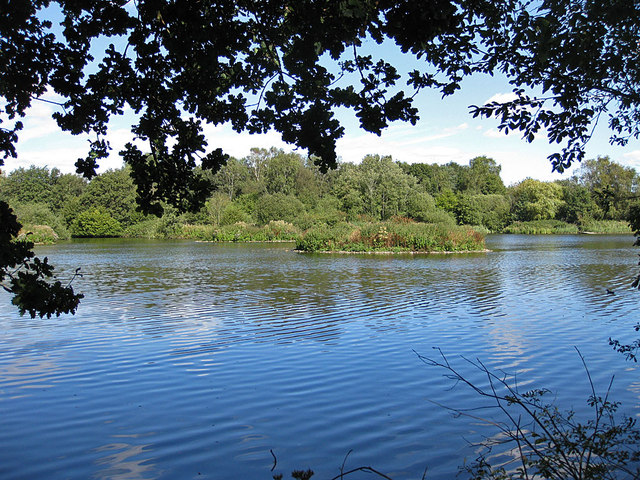Old Squaw Lake, Pensthorpe