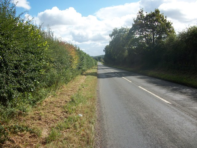 Hampden Bottom
