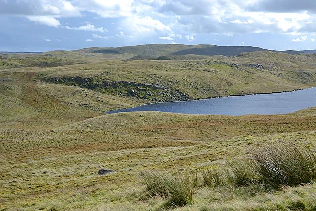 View across Llyn Teifi