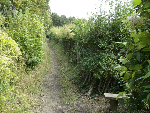 Footpath junction near Cobhambury Wood