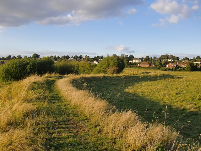 View towards Pulborough from the Brooks