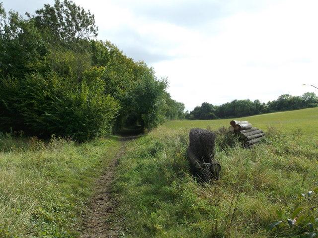 Wealdway beside Millhill Shaw