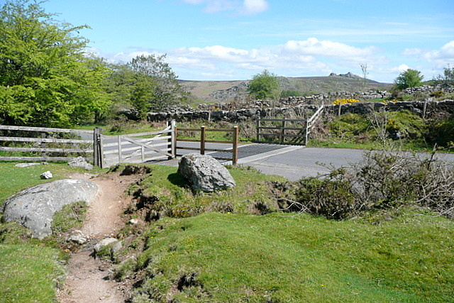 Cattle grid on Holwell Down